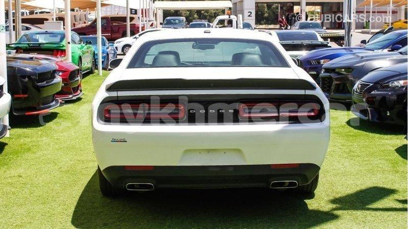 Big with watermark dodge challenger kampot province import dubai 4302
